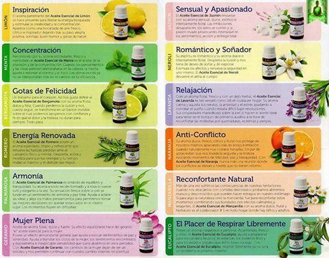 aceites esenciales y sus propiedades - Google Search