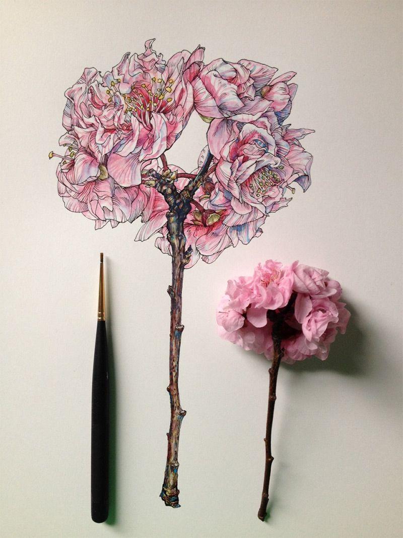Fleur papier dessin flore dessin illustration et art - Coloriage petit scientifique ...