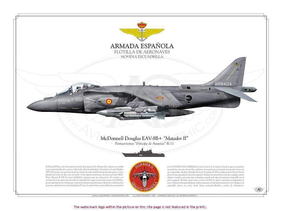 Postales gráficas de aeronaves navales de la Armada española ...
