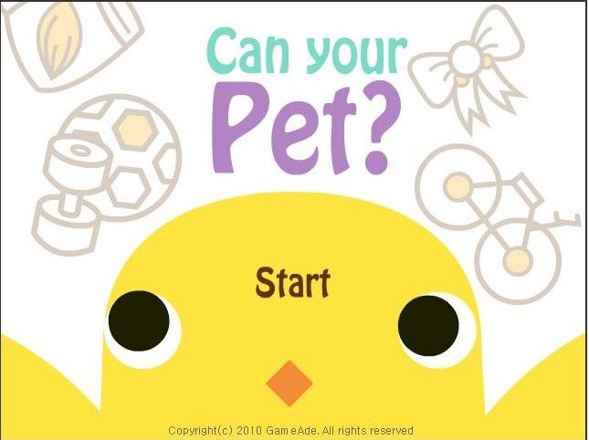 Can Your Pet Play Now
