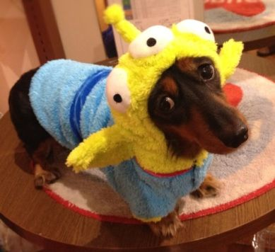 dog in toy story aliens costume - Aliens Halloween Costume Baby