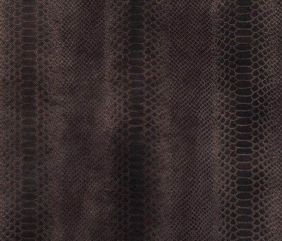Cobra | Alphenberg. Check it out on Architonic