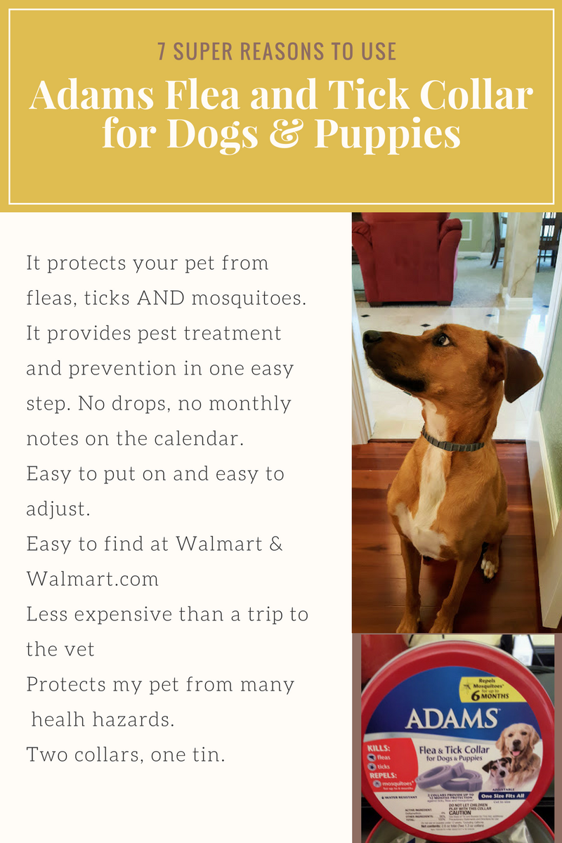 I Love Adamspetcare It Is Easy To Find The Adams Flea Tick Collar For Dogs Puppies At Walmart And Walmart Com Just Look For The R Flea And Tick Fleas