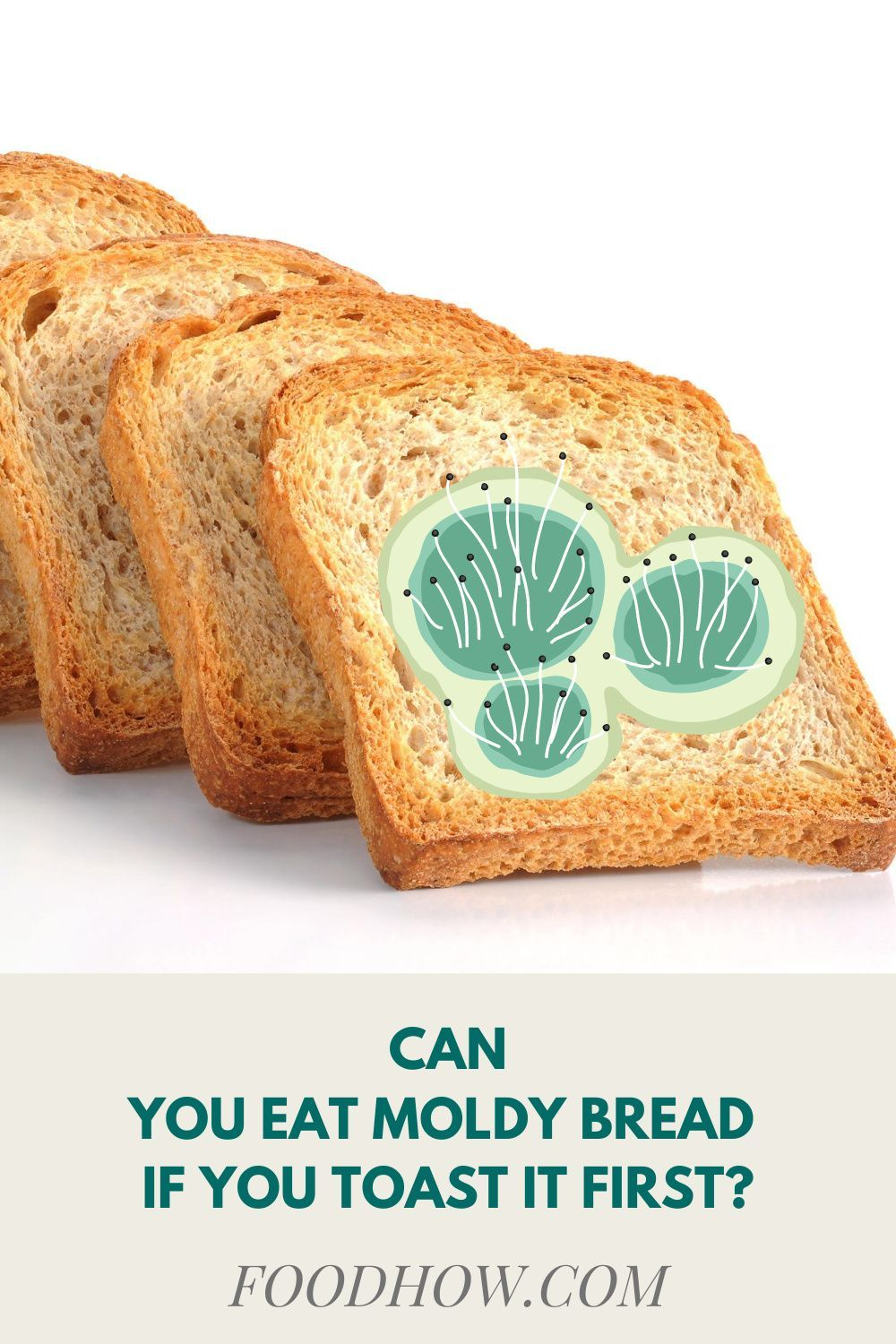 How Soon Do I Get Sick After Eating A Moldy Bread This Will Happen In 2021 Eat Food Food Safety