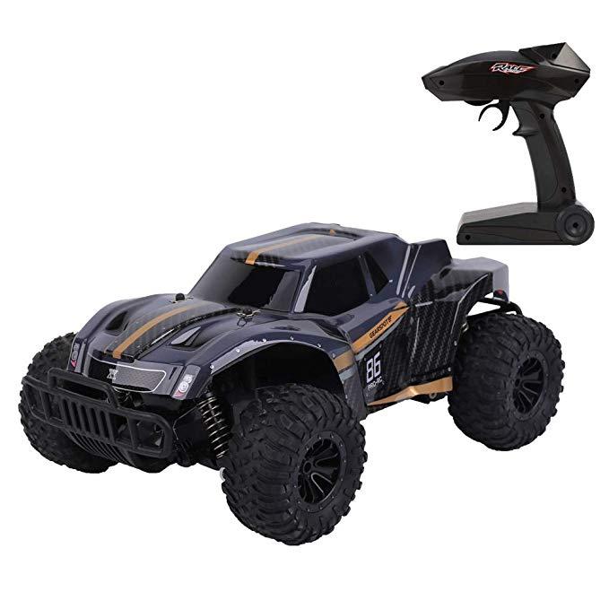 FLYZOE Remote Control Car 1 16 Scale Buggy