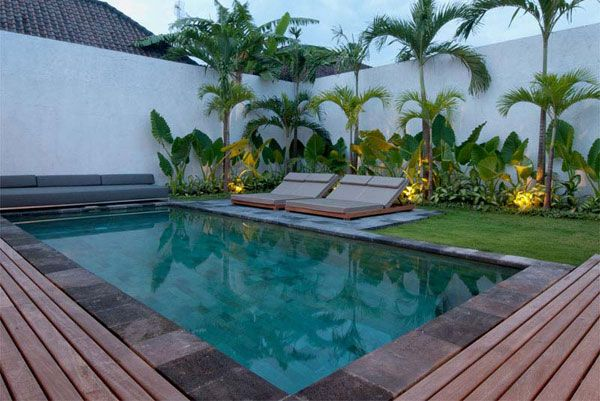 Villa south seminyak bali villas garden inspiration for Flowers around swimming pool