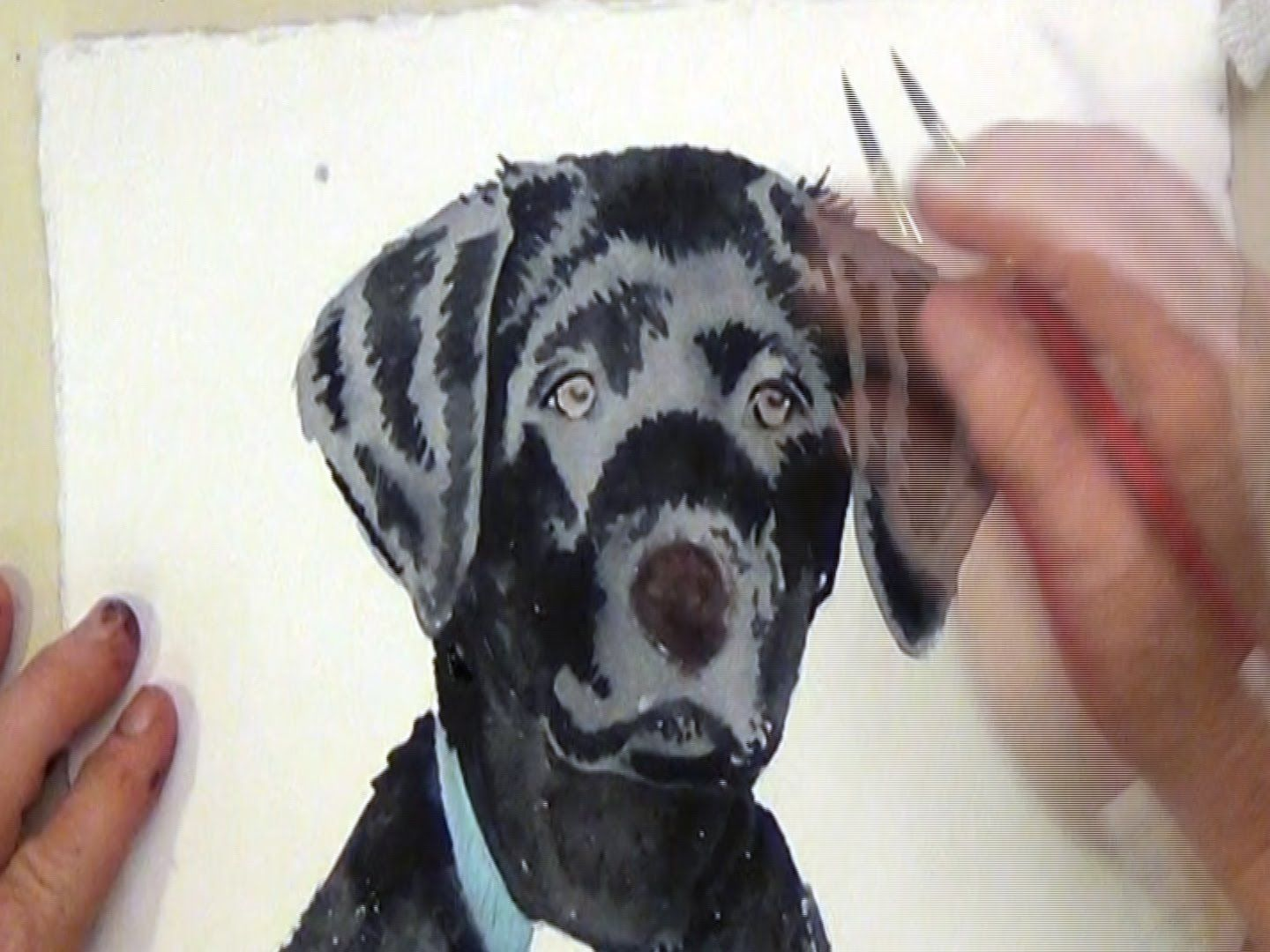 How To Paint A Black Dog With Watercolor Dog Paintings Watercolor Dog Photography Art Projects