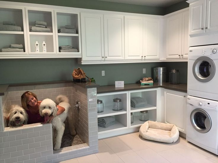 Trendy New Built-in Home 'Pet Suites' Are the Ultimate Way to Pamper Your Pooch #dreamhouserooms