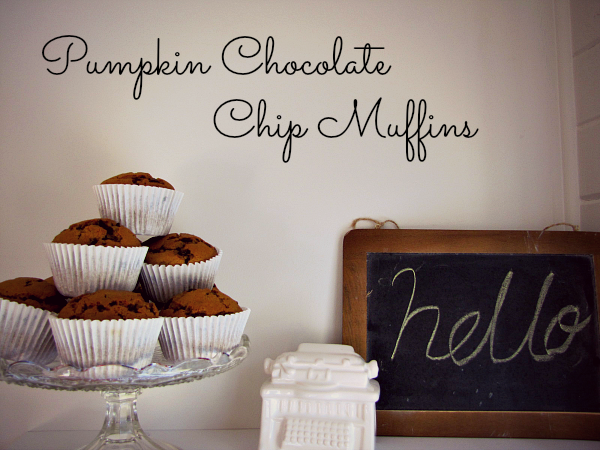 Pumpkin & Chocolate Chip Muffins - PaisleyJade http://www.paisleyjade.com/2014/03/pumpkin-chocolate-chip-muffins.html #pumpkin #muffins #recipe #delicious #yum #food