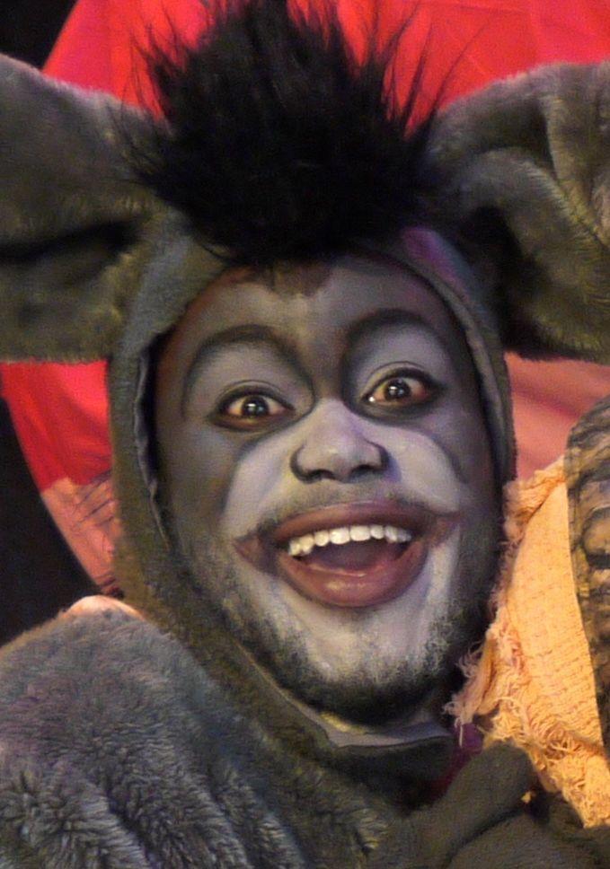 Halloween Schminken Deutsch.Donkey Make Up Google Search Musical Schminken Fasching