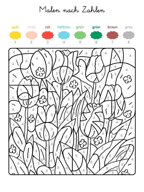 ausmalbild malen nach zahlen tulpenwiese ausmalen