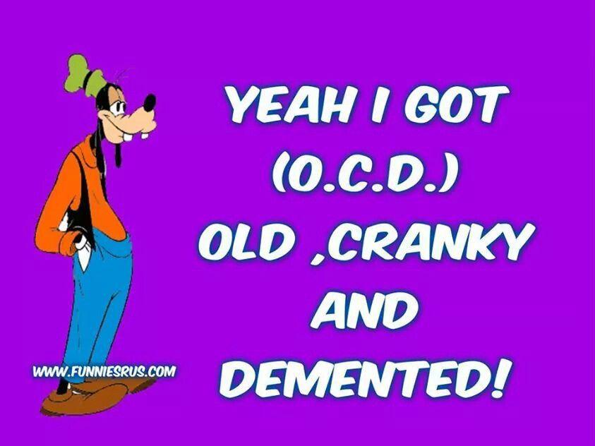 # JOKE | Jokes quotes, Goofy quotes, Funny quotes