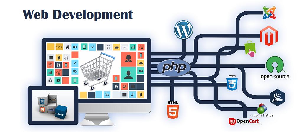 Web development company in noida sector 2 | Ecommerce web design, Web  development design, Website development company