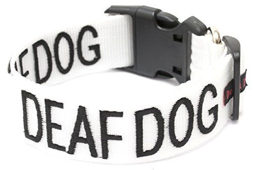 Special Offers Deaf Dog White Color Coded L Xl Buckle Dog Collar