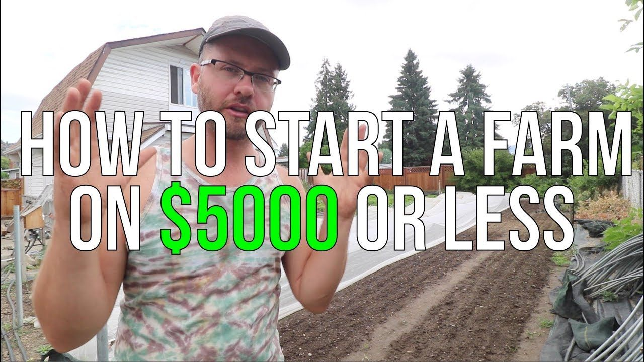 HOW TO START A FARM ON 5000 OR LESS!!! Starting a farm