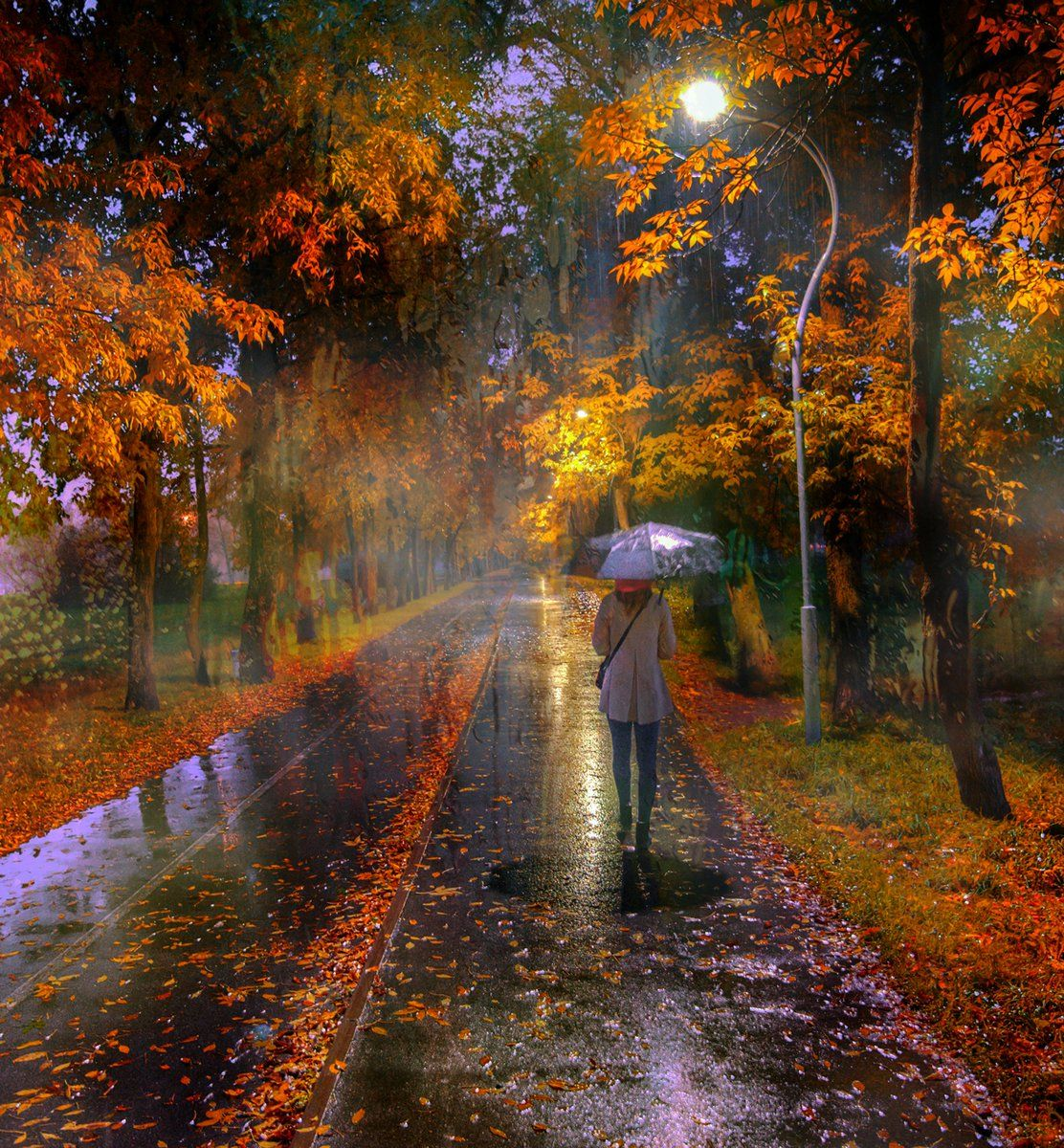 Lisa Ruiz on in 2020 | Autumn scenes, Autumn rain, Scenery
