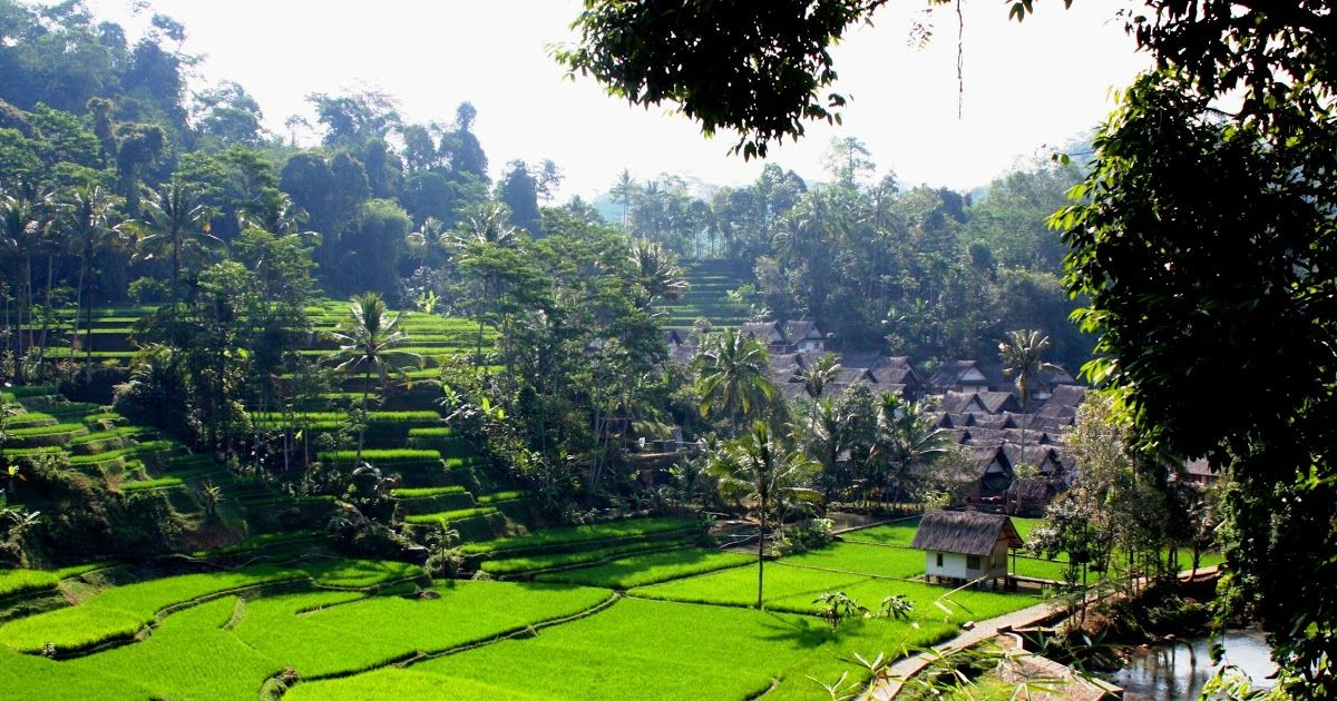 Gambar Lukisan Pemandangan Alam Di Indonesia Download Gambar Lukisan Alam Gambar Lukisan Pemandangan Alam Di Indonesiahttp Pemandangan Tempat Liburan Liburan