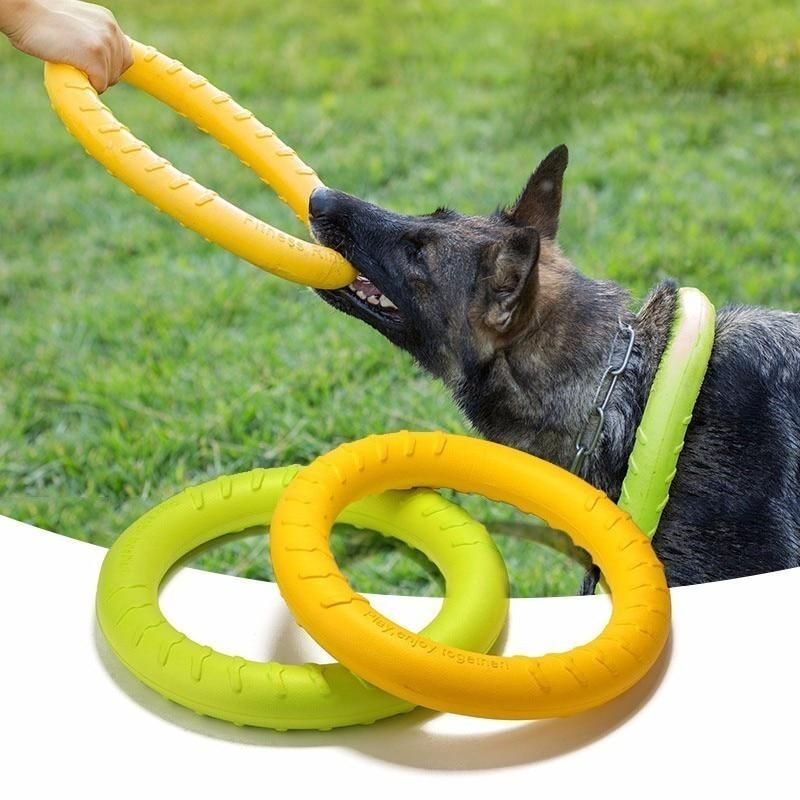Agility Training Toy Dog Toys Agility Training For Dogs Pet Dogs