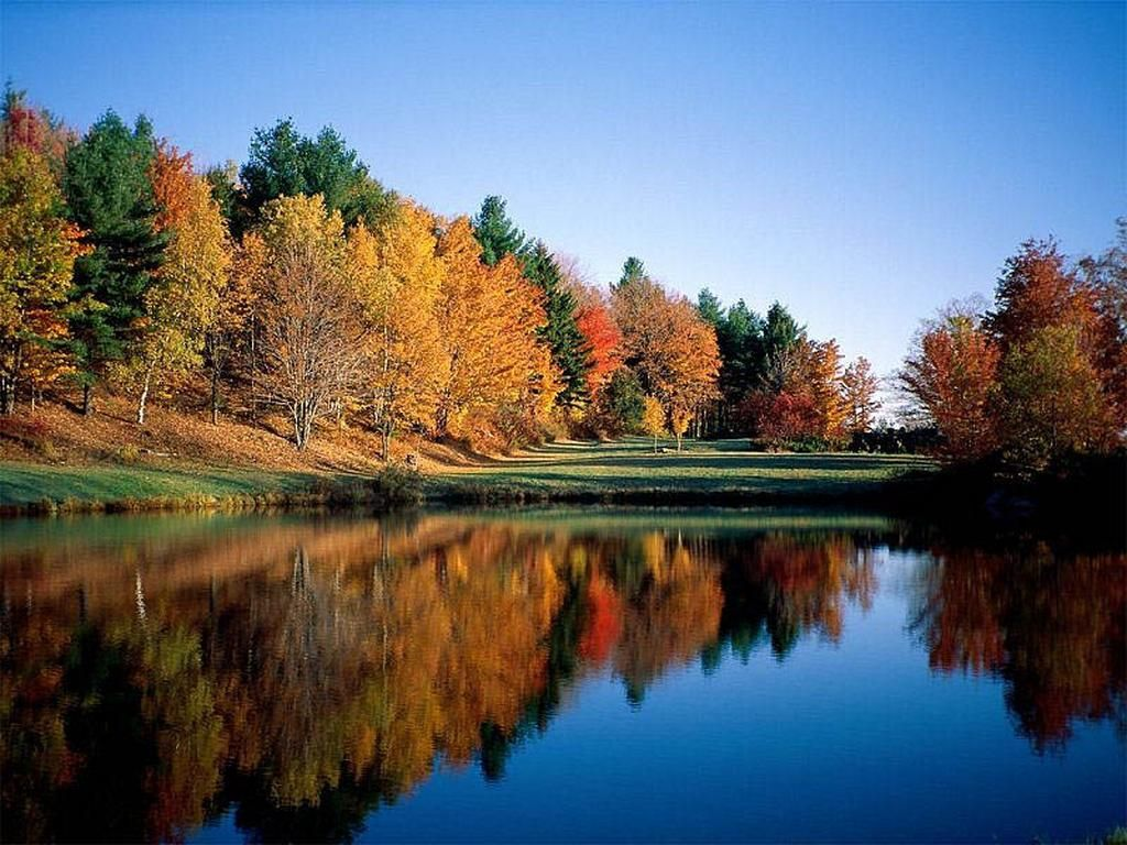 Paesaggi naturali cerca con google viaggi pinterest for Semplici paesaggi