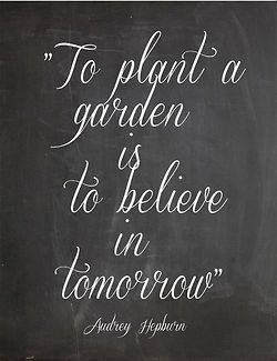 To plant a garden is to believe in tomorrow - I'd love a sign like this for my backyard.