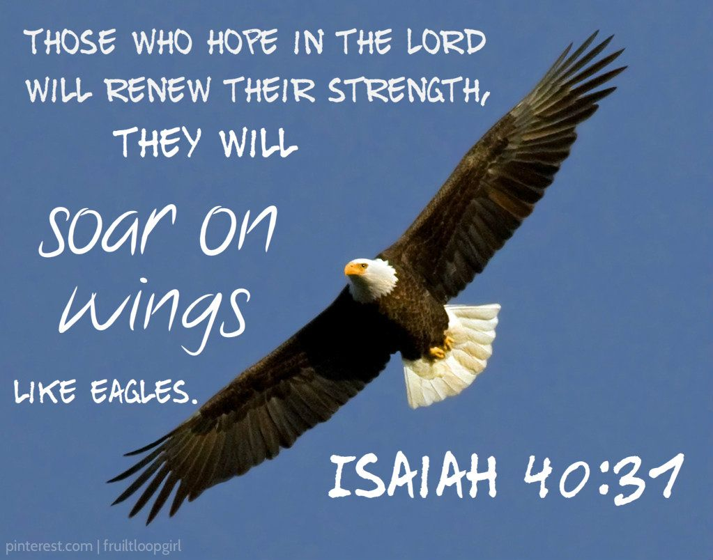 Isaiah 40 31 You Will Soar On Wings Like Eagles Bible Quotes Prayer Prayer Scriptures I Love The Lord