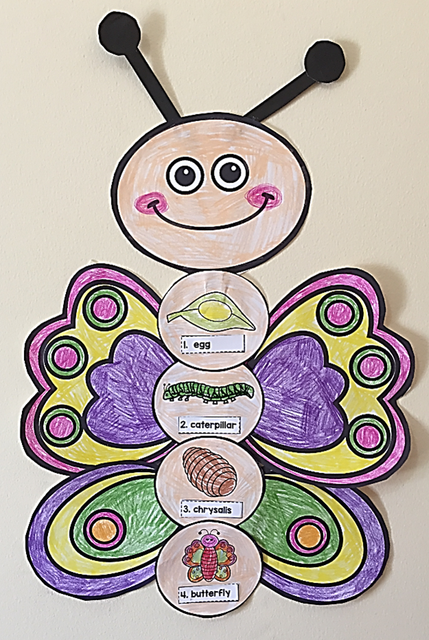 BUTTERFLY LIFE CYCLE ART ACTIVITY #insects