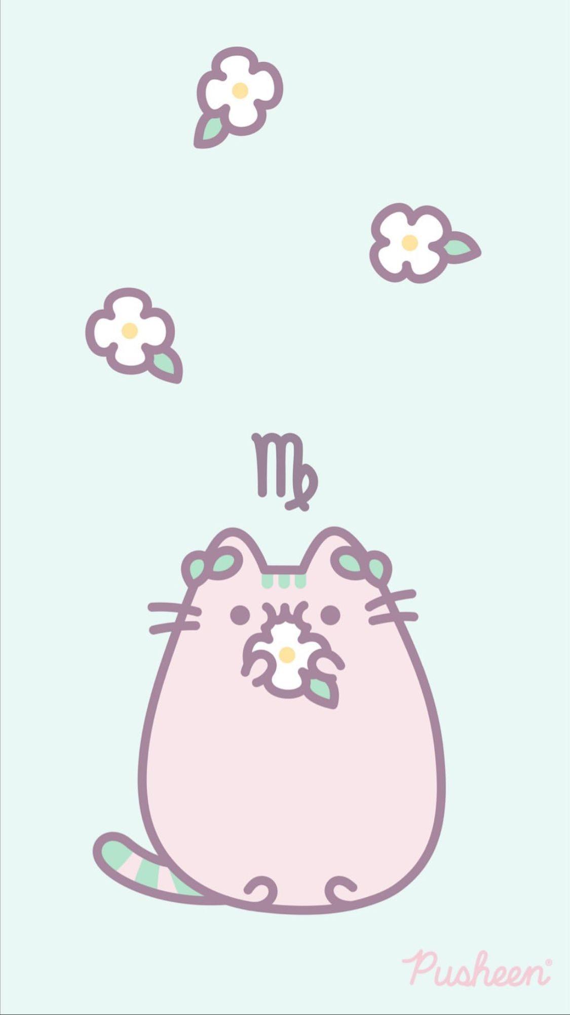 Pin By Kat Renee On Kawaii Pusheen Cute Pusheen Cat Pusheen