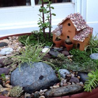 A fairy garden I made.
