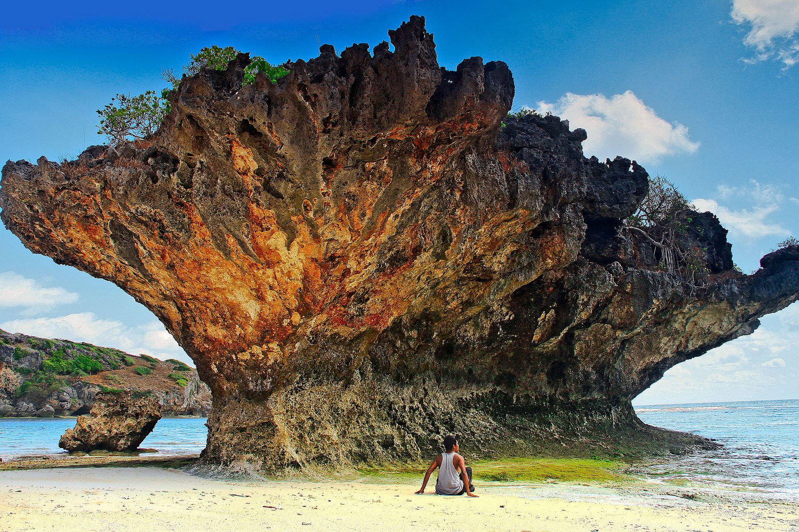 Image result for rote island
