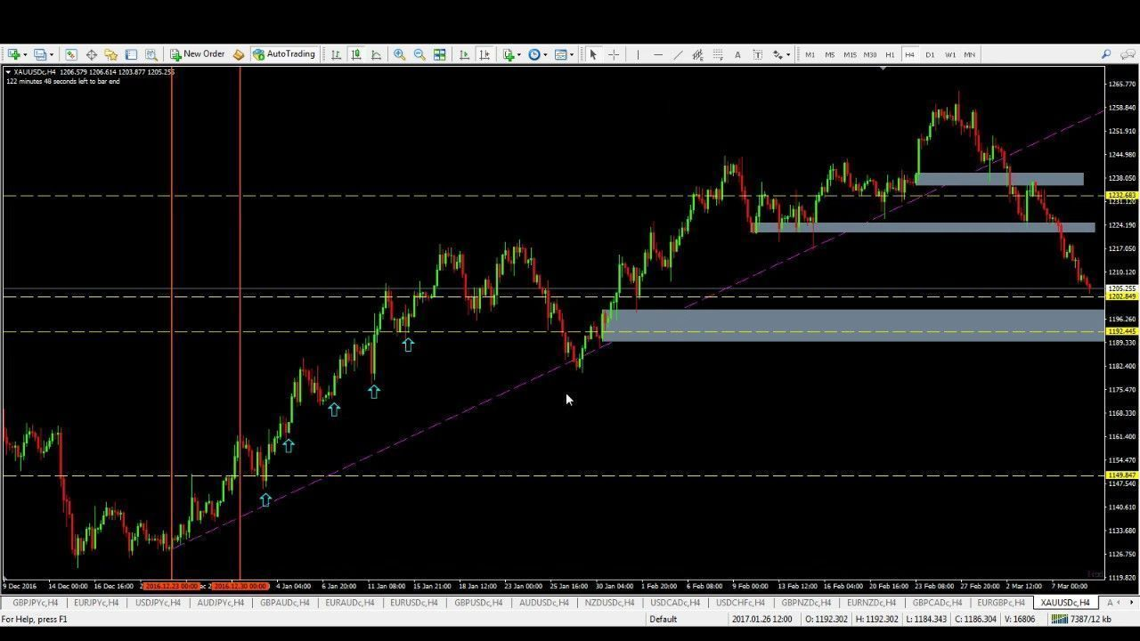 Forex Help Trading Review Yourforexeducation Thebasics Forextradinginfo