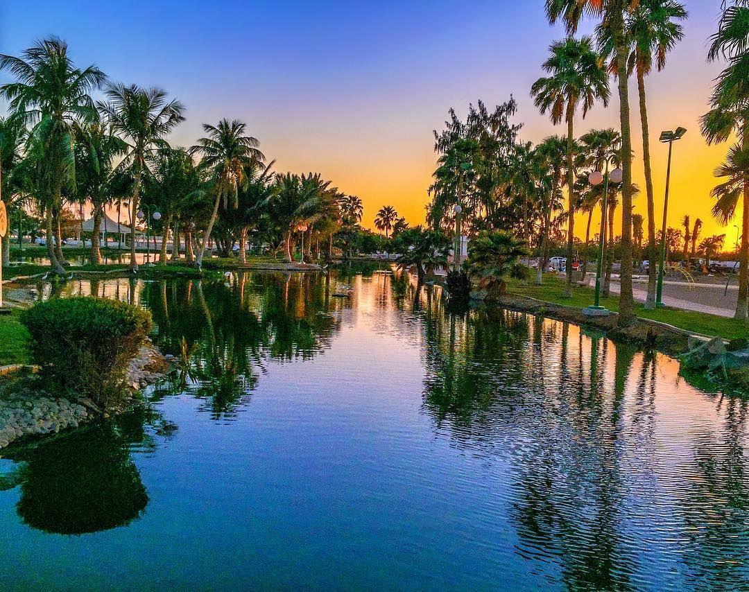 ينبع بعيون عربية On Instagram الواحة الغناء في حدائق البحيرة الصناعية ينبع الصناعية ينبع البلد Yanbu Ksa Yanbu ينبع حقنا ينب Outdoor River Canal