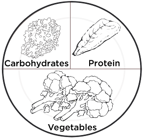 Image result for Balanced diet plate model Line drawing