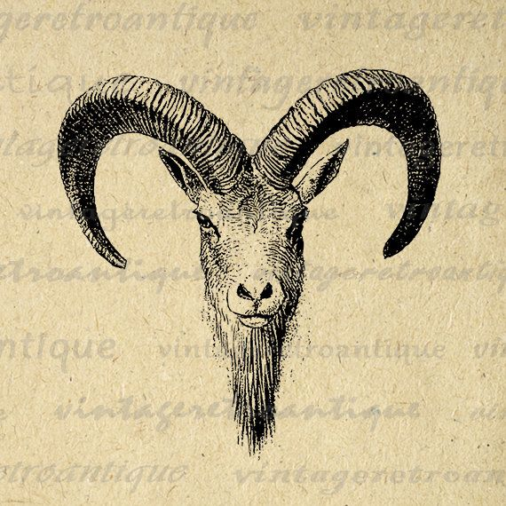 Antique Goat Digital Printable Image Ram Horns Graphic Download Jpg Png Eps 18x18 Hq 300dpi No 481 Vintageret Printable Image Antique Artwork Vintage Artwork