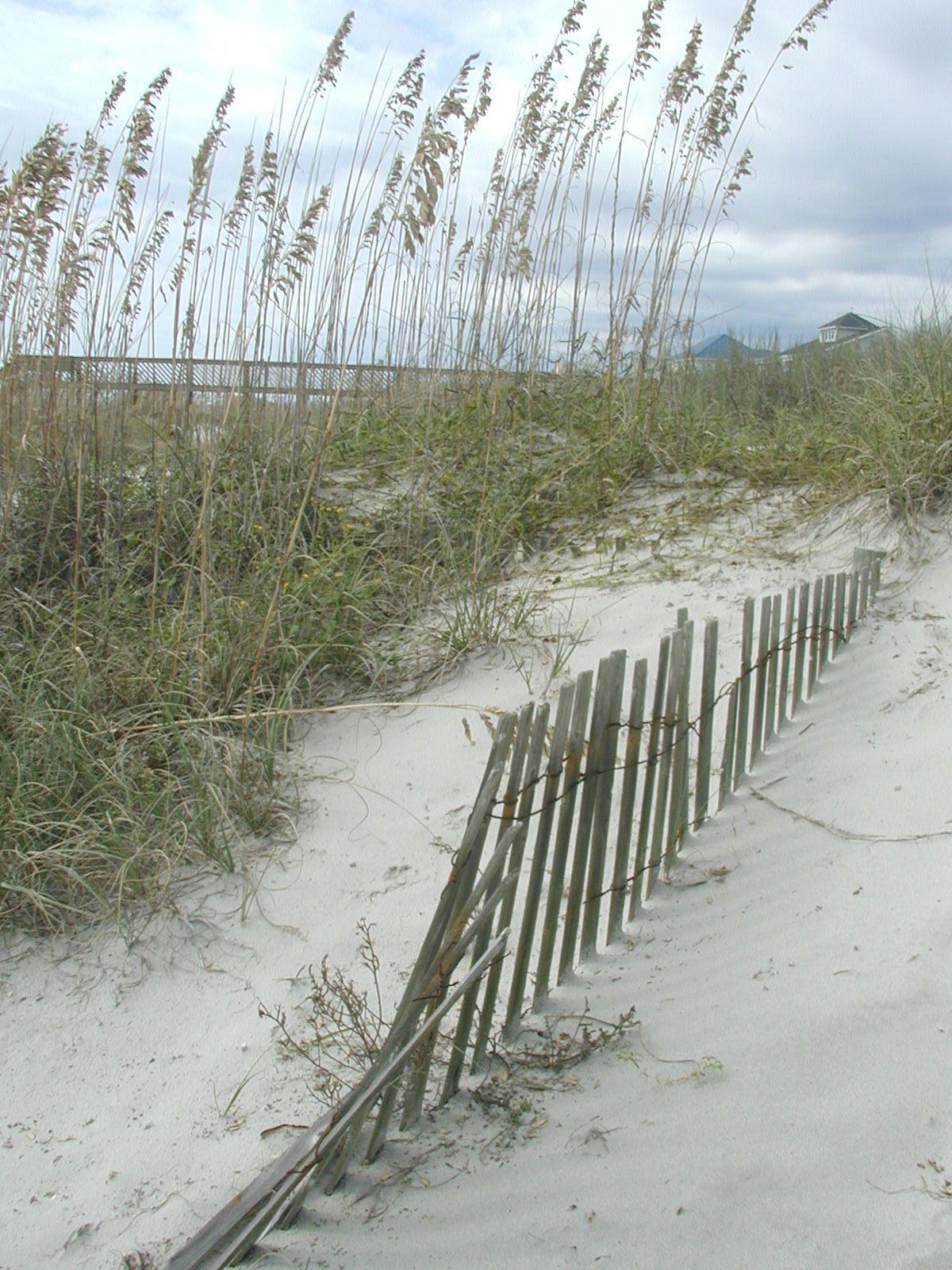 Walk On The Beach 33