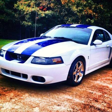 Welcome Mustangimages Mustanguniverse Com Bluehost Com 2004 Ford Mustang Ford Mustang Cobra Ford Mustang