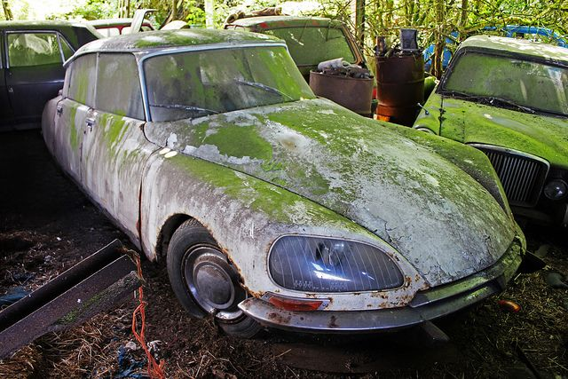 abandoned car citro n ds 21 vive la france pinterest abandonn voitures abandonn es et. Black Bedroom Furniture Sets. Home Design Ideas