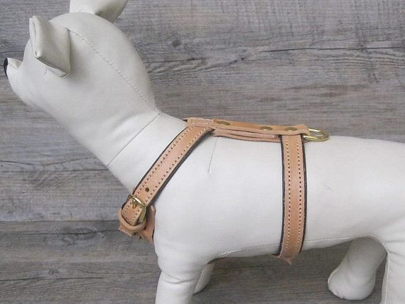Tan Leather Y Front Dog Harness Fully Adjustable For Small And