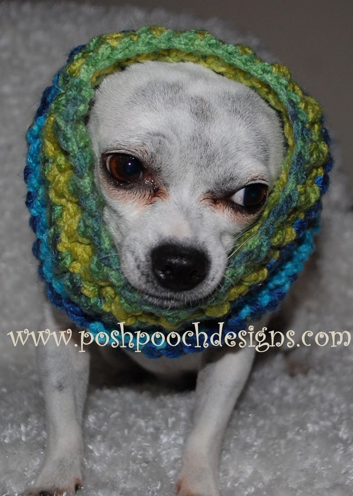 Dog Snood Crochet Pattern - For All Size Dogs | Dog snood, Snood and ...