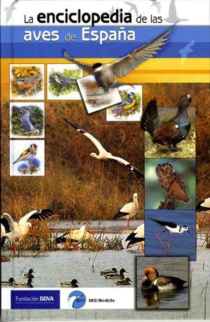Esta Guía Pretende Dar A Conocer Los Aspectos Más Relevantes De Las 560 Especies Que Están Presentes En El Territorio Español A España Aves Territorio Español