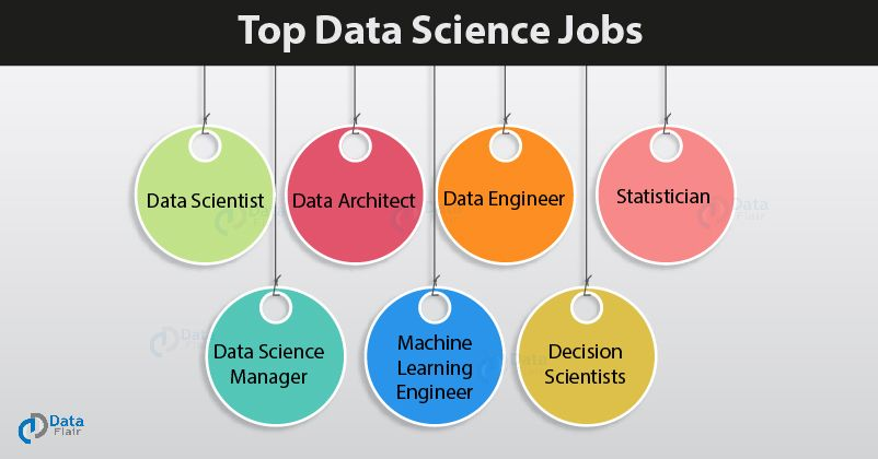 Top Data Science Jobs Roles For 2019 Find What Suits You Best