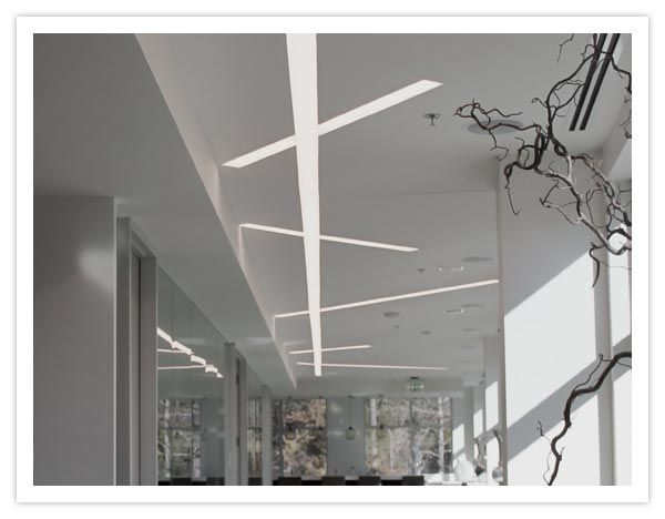 Finelite Project Showroom Offices Linear Lighting Large Bookshelves Wall Bookshelves