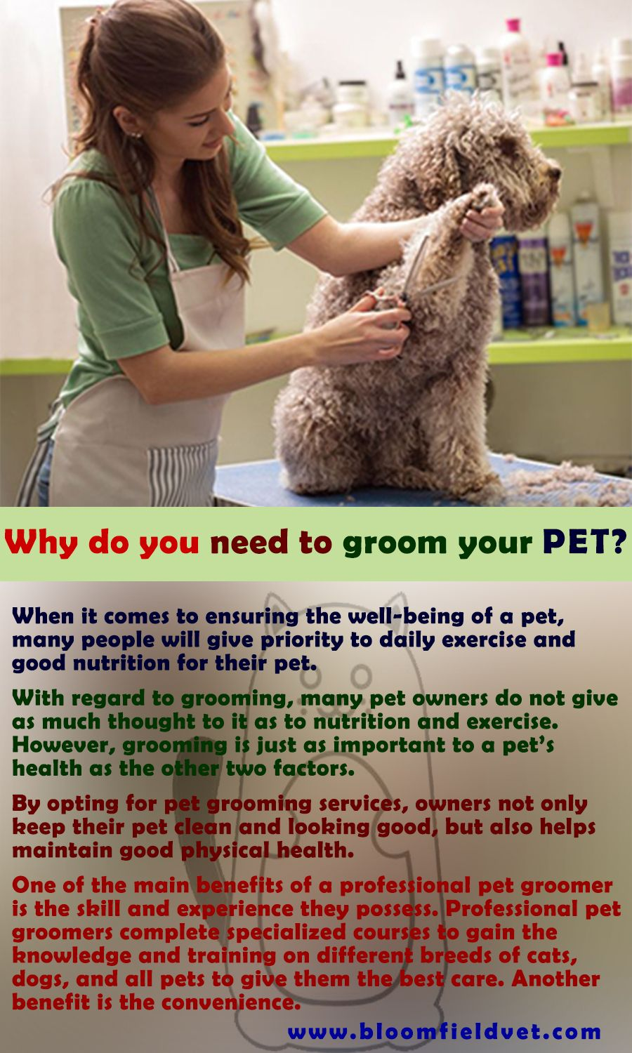 Excellent healthcare for your pet at our clinic Bloomfield
