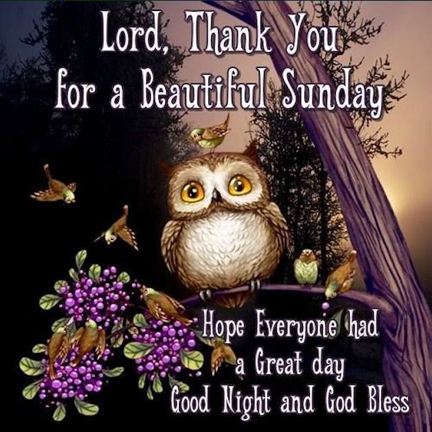 Thankful For A Beautiful Sunday Night   Blessed night, Good night  blessings, Good night wishes