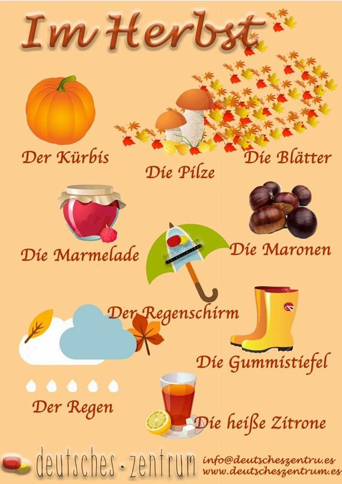 Herbst Deutsch Wortschatz Grammatik German DAF Vocabulario Alemán ...