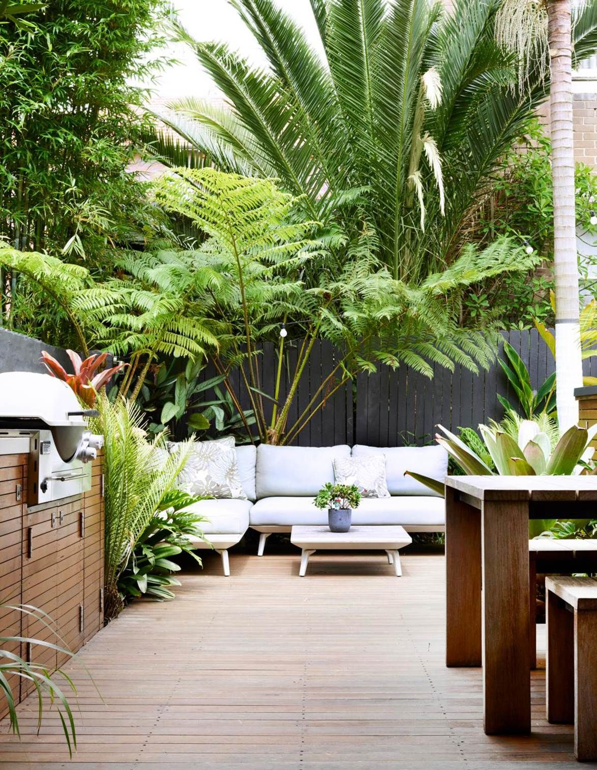 11 coastal gardens that are robust and beautiful  Tropical garden