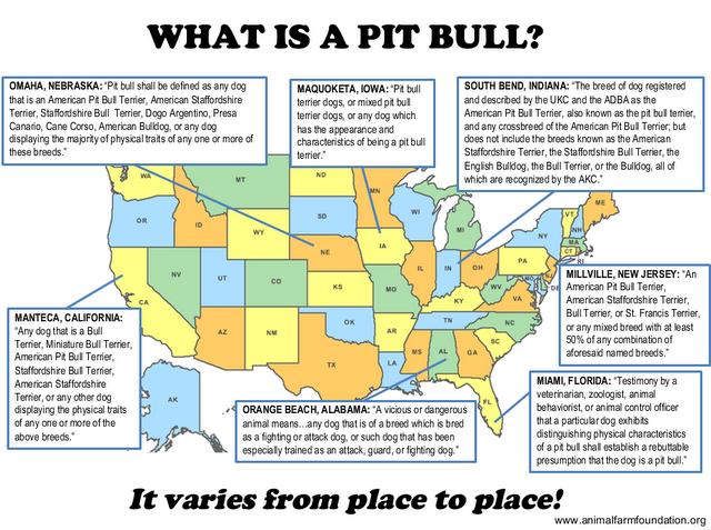 interesting info on pits
