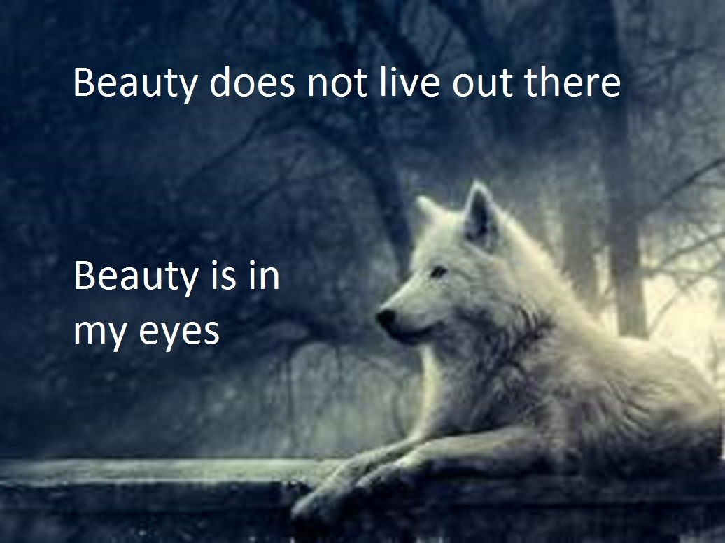 I Like Wolf Quotes Lone Wolf Quotes Fitness Inspiration Quotes