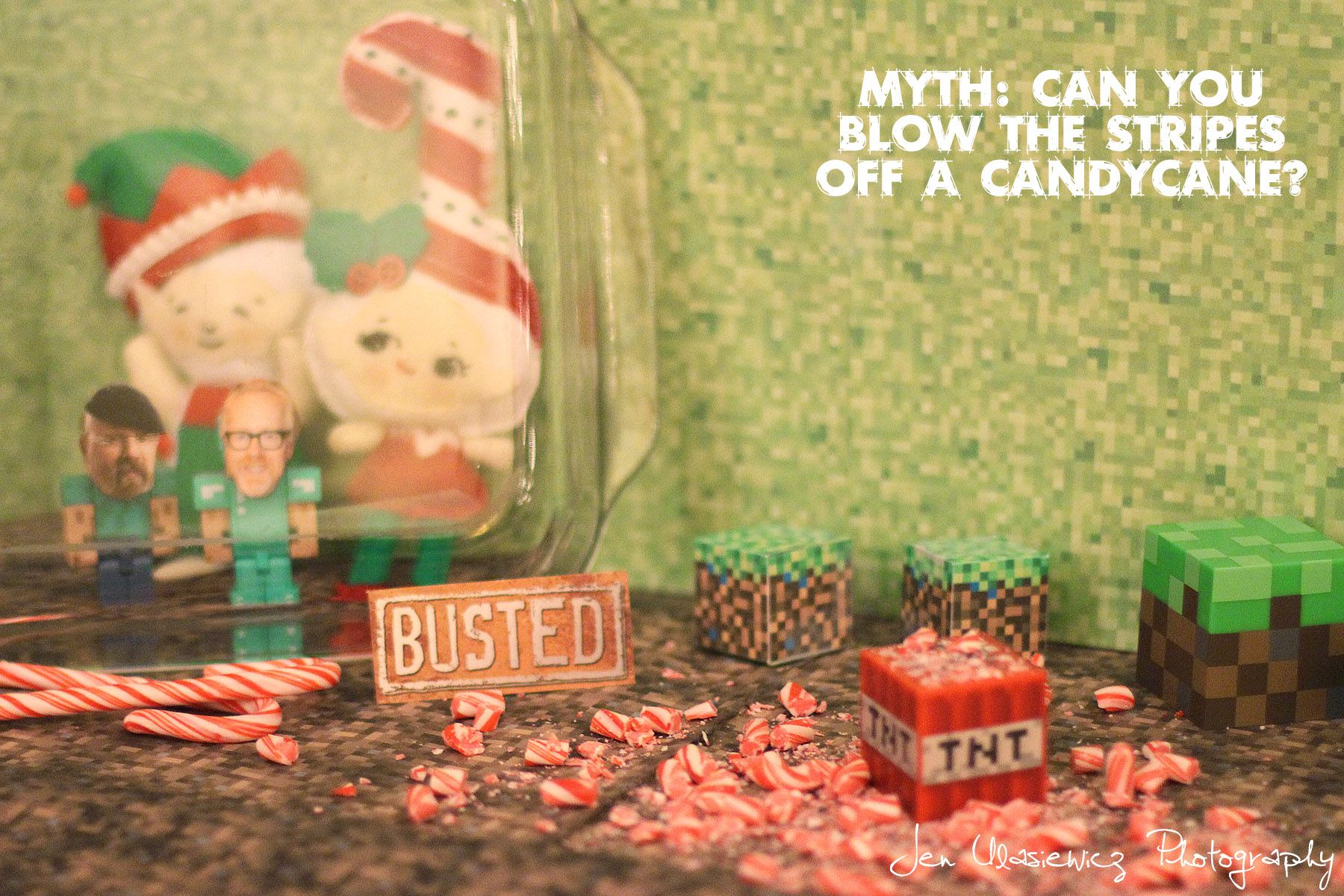 fiona and jingle elf on the shelf minecraft mythbusters fiona and jingle pinterest elves and elf ideas - Mythbusters Christmas Tree