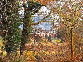 Garten Im Winter freitagvormittag in berlin botanischer garten im winter berlin