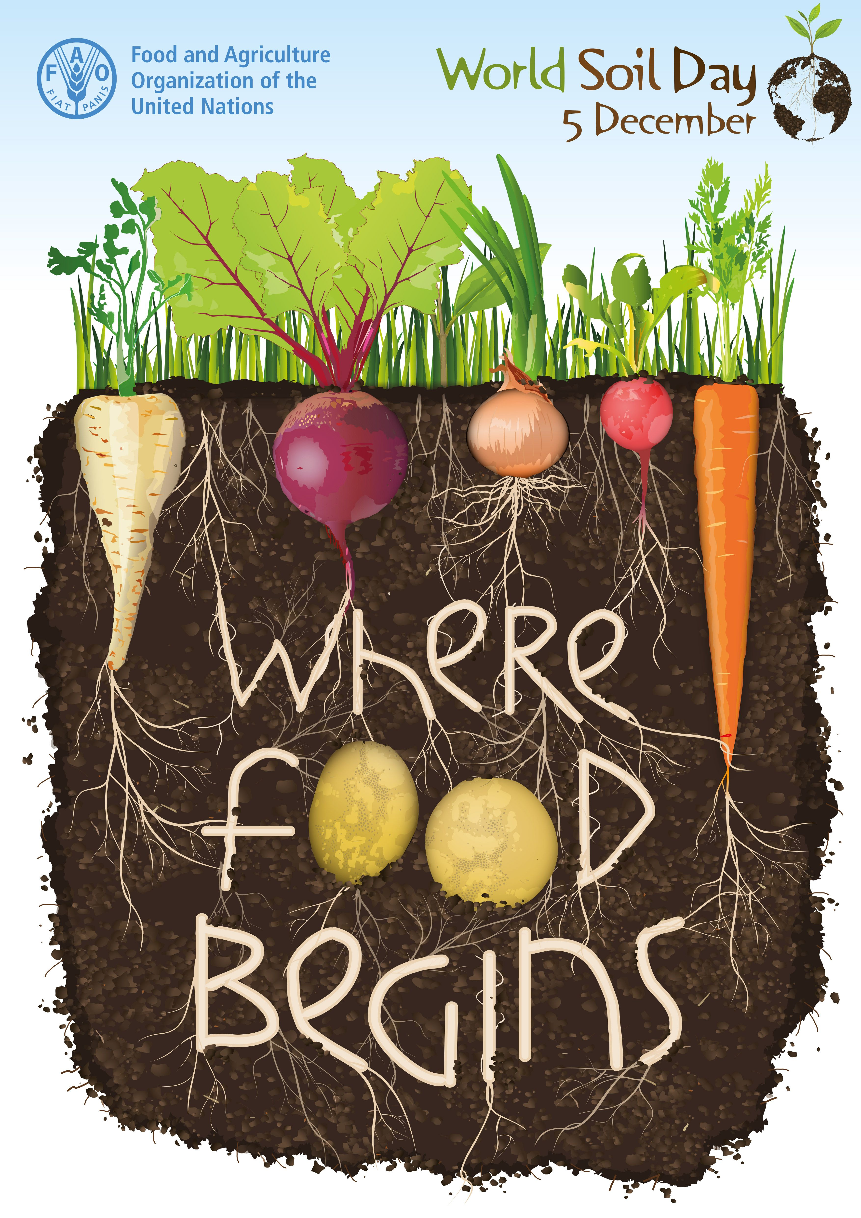 Worldsoilday The Importance Of Healthy Soil Amp Advocate